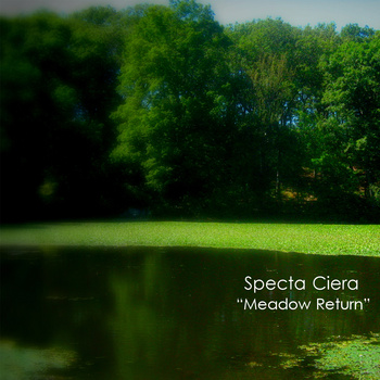 Specta Ciera - Meadow Return